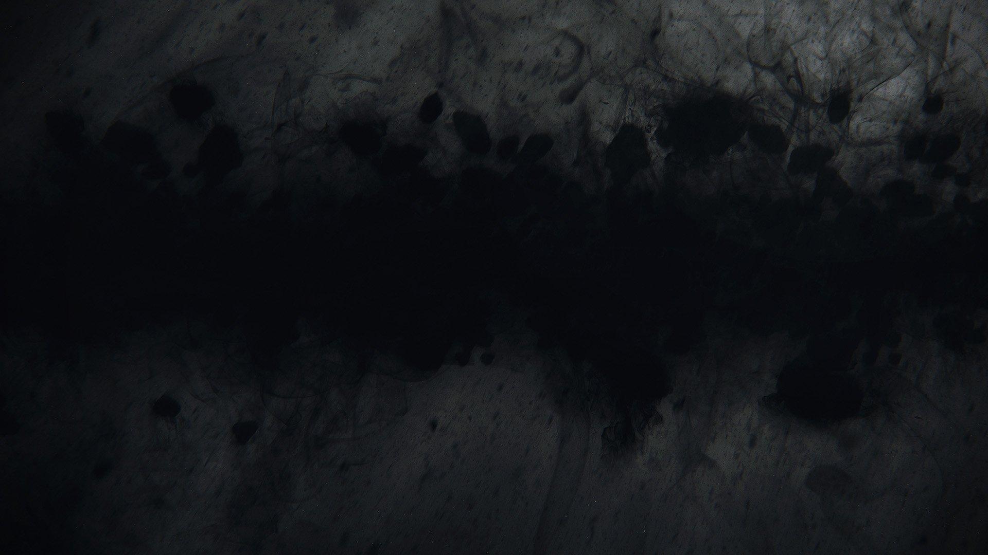 Dark Matter Field